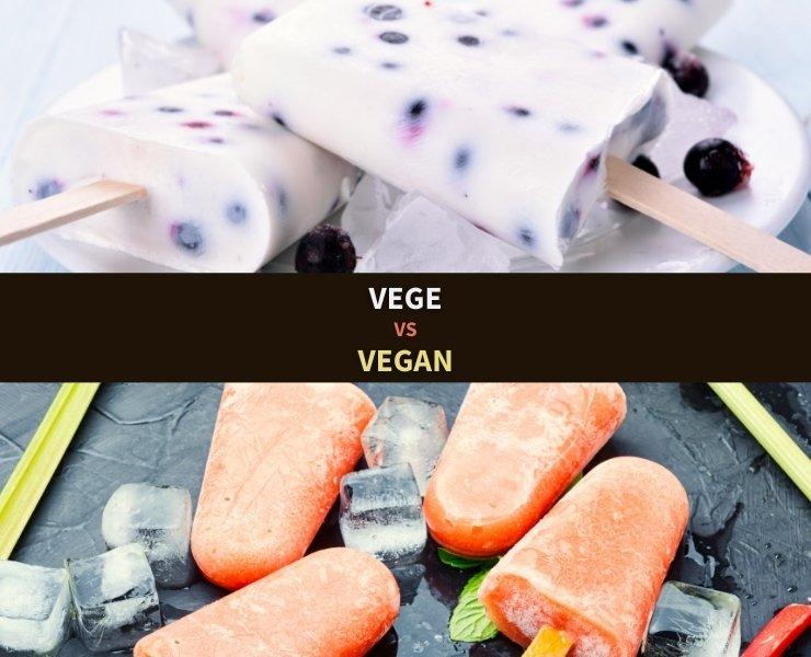 Frozen yogurt and blackcurrant ice cream face vegan ice cream